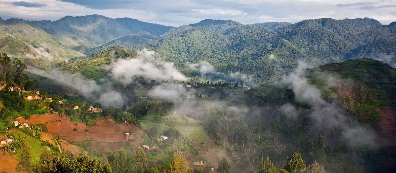 Uganda Safarireise – Primaten und bezaubernde Landschaften Urlaub 2