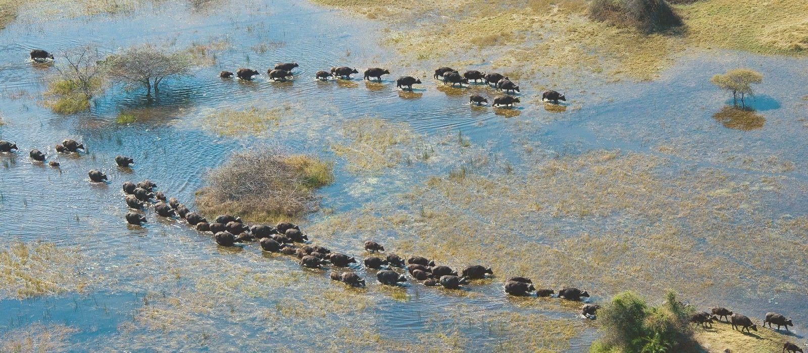 Botswana Reisen & Rundreisen
