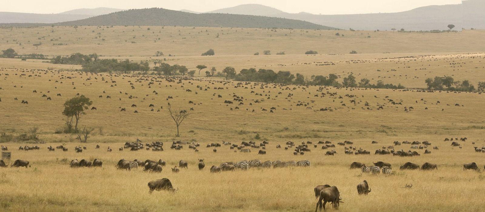 Kenia Reisen & Rundreisen 1