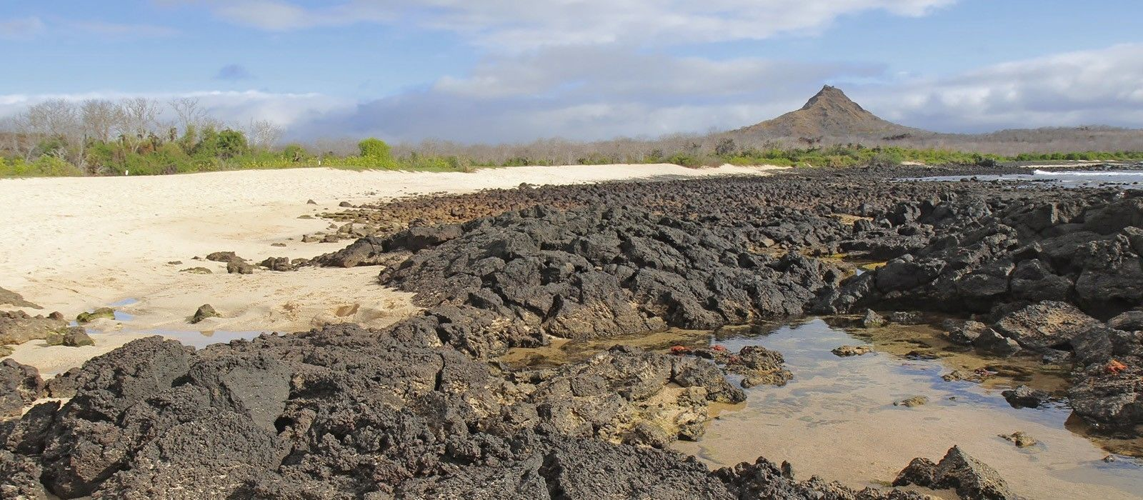 Destination Isla Santa Cruz Ecuador/Galapagos