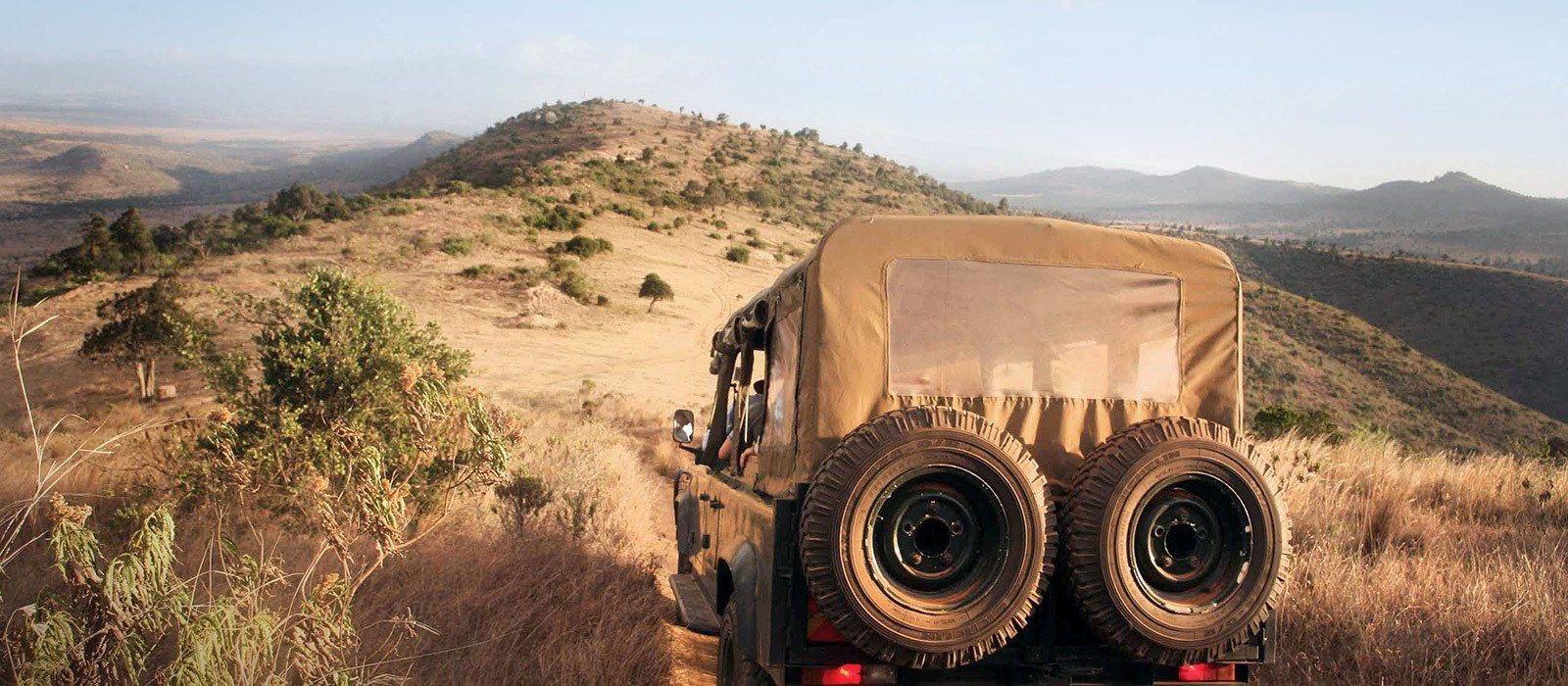 Kenia und Ruanda: Safari und Gorilla-Trekking Urlaub 3