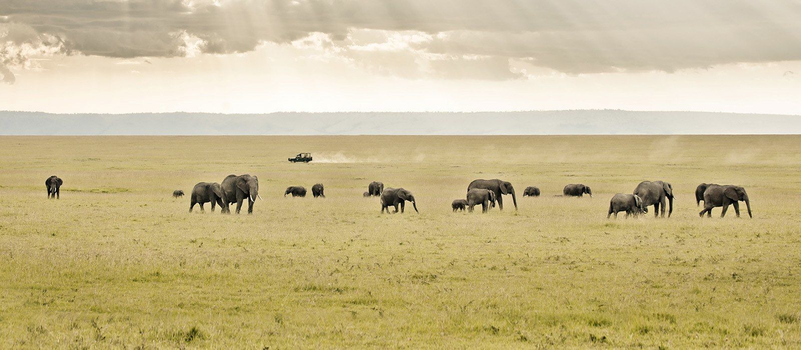 Kenia: Masai Mara, Wandersafaris & Traumstrände Urlaub 4