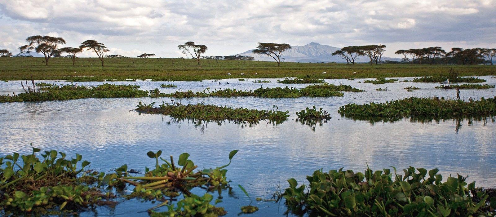Kenia: Wandersafari Rundreise Urlaub 2
