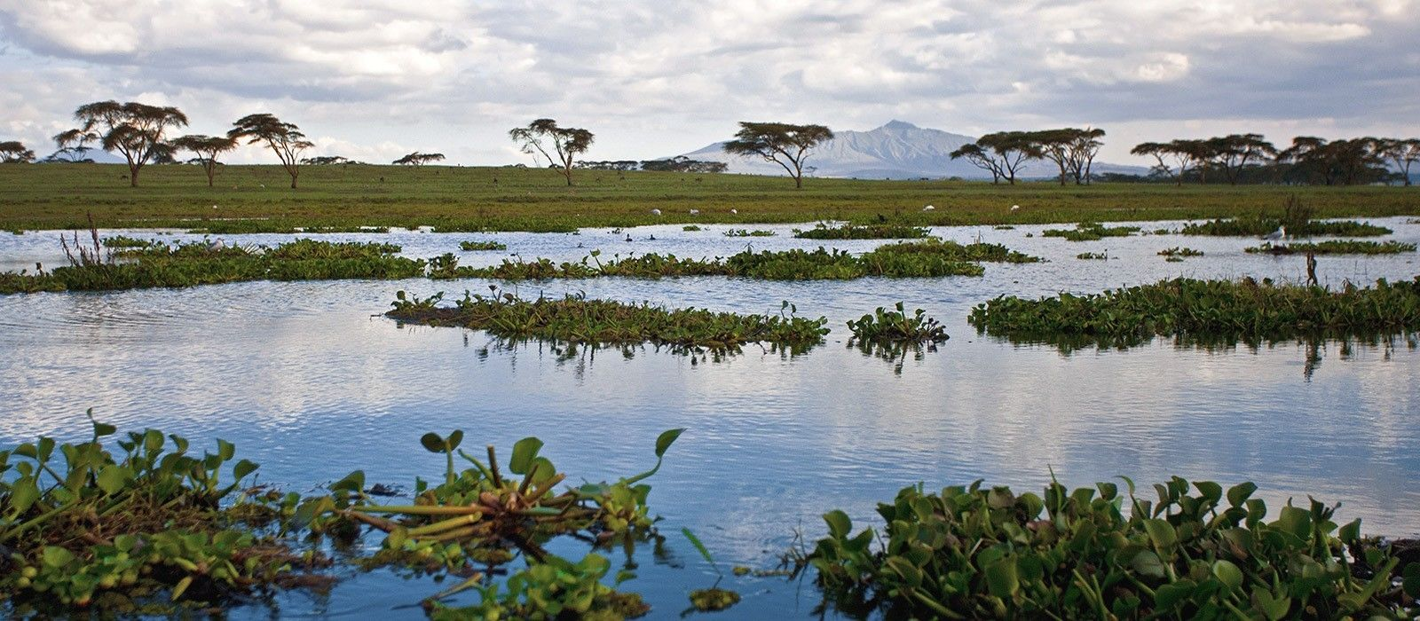 Nah und Pur – Kenia Erlebnisreise Urlaub 2