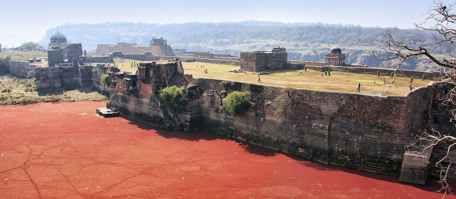 Nordindien Rundreise: Städte, Tempel & Safaris Urlaub 6
