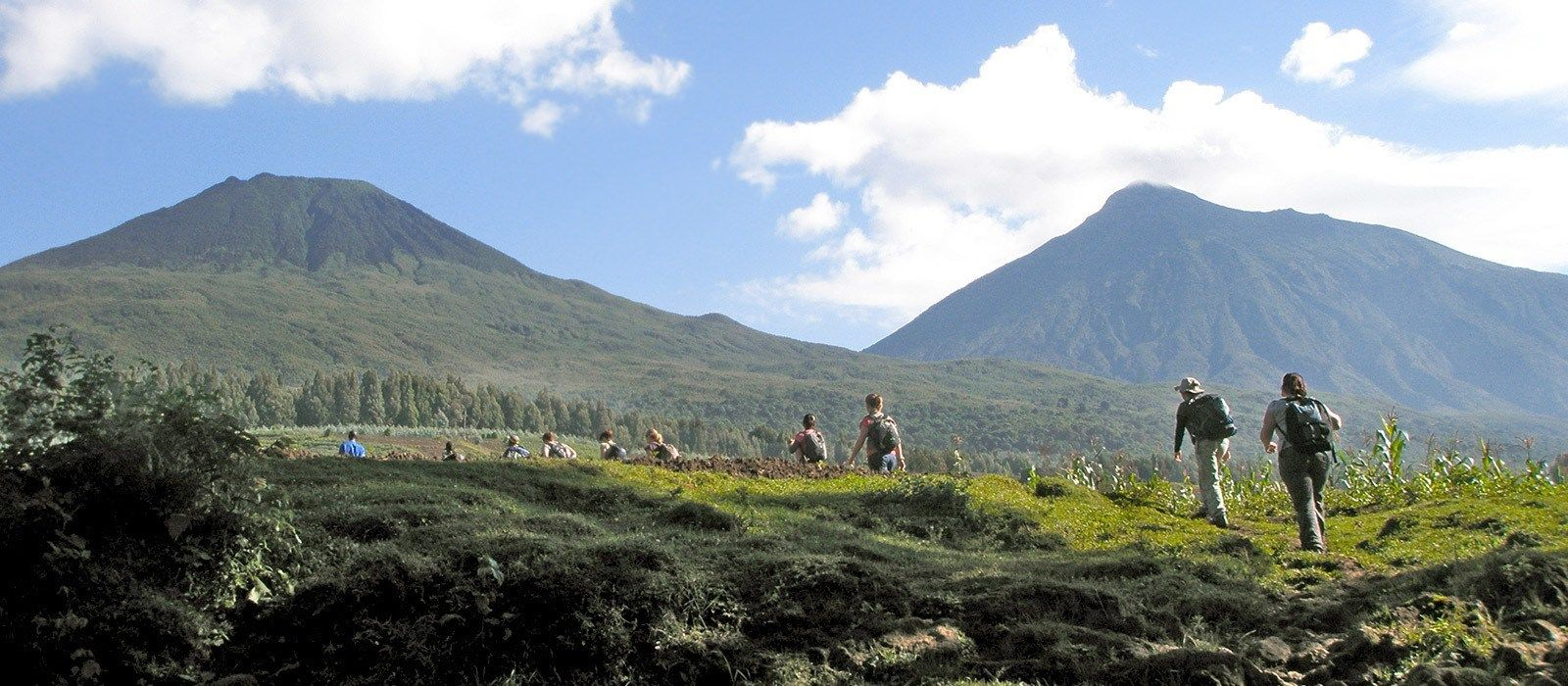 Gorilla Trekking in Ruanda Urlaub 3