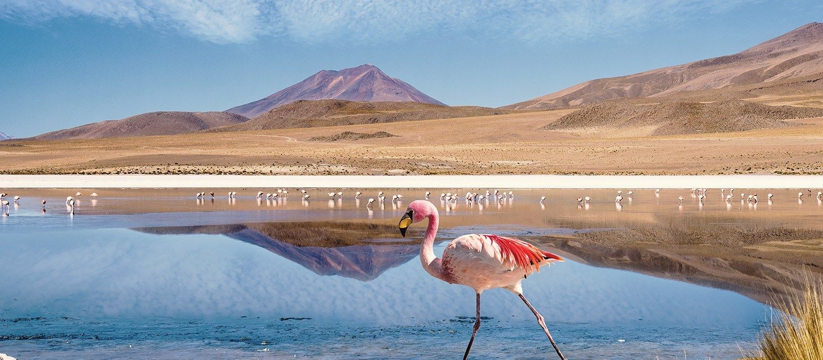 Destination Uyuni Bolivia