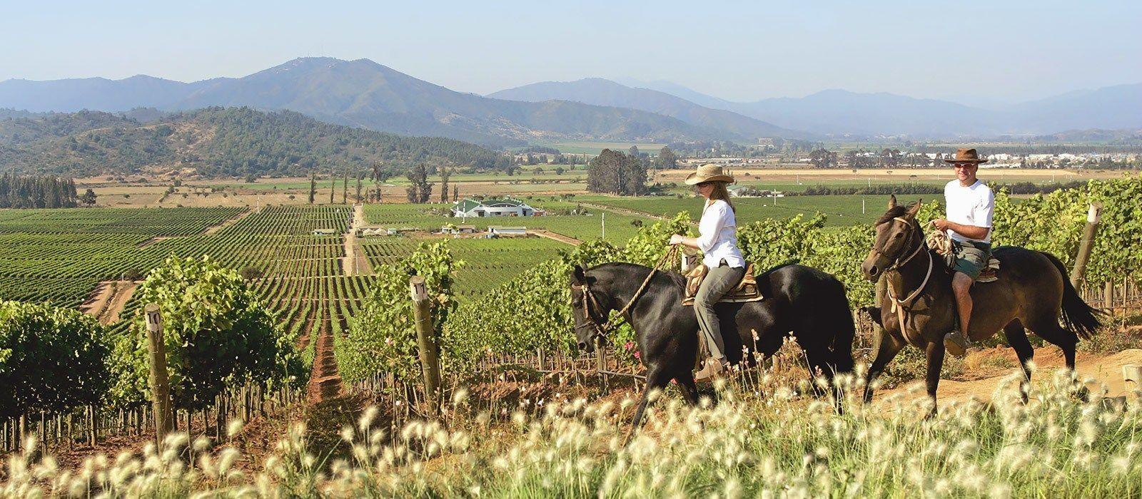 Chile: Seen und gesehen werden Urlaub 4