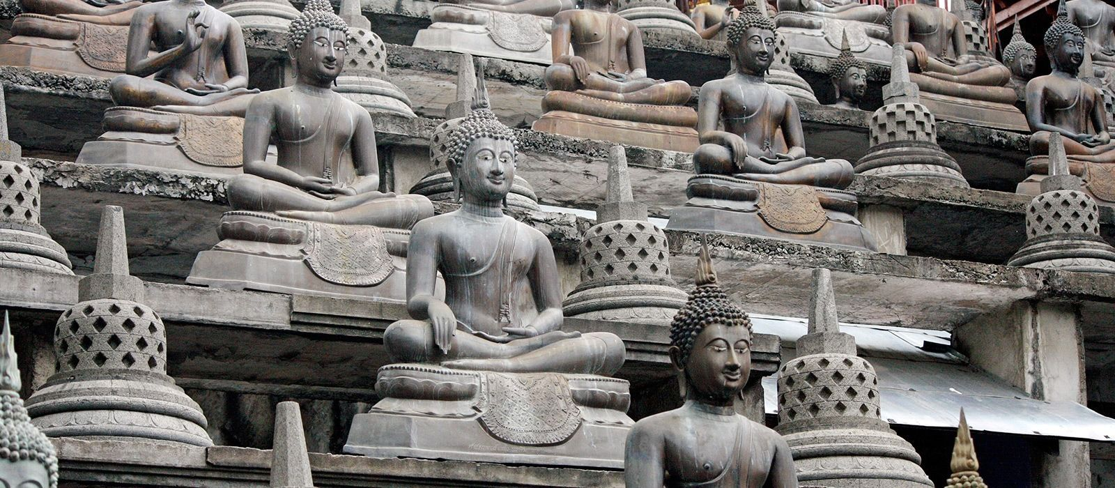 Luxuriös und hautnah – Große Sri Lanka Rundreise Urlaub 6