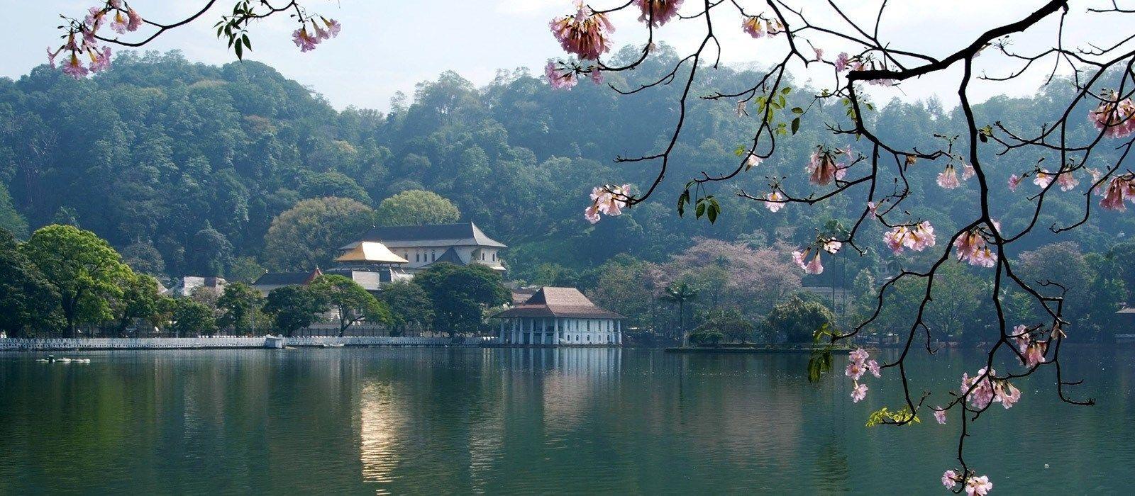 Simply Sri Lanka: Temples & Tea Tour Trip 5