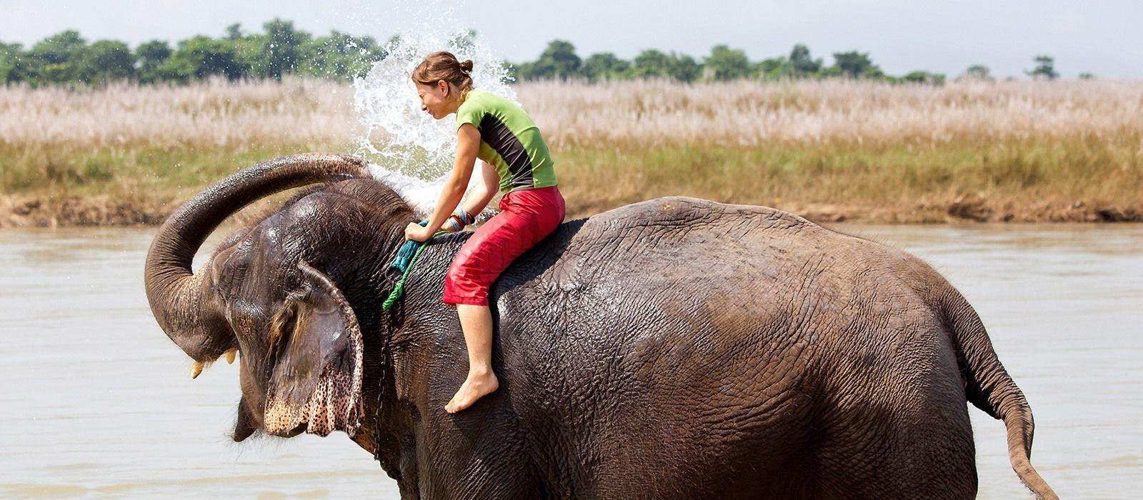 Nepalreise: Paläste, Tiger und Himalaya Urlaub 5