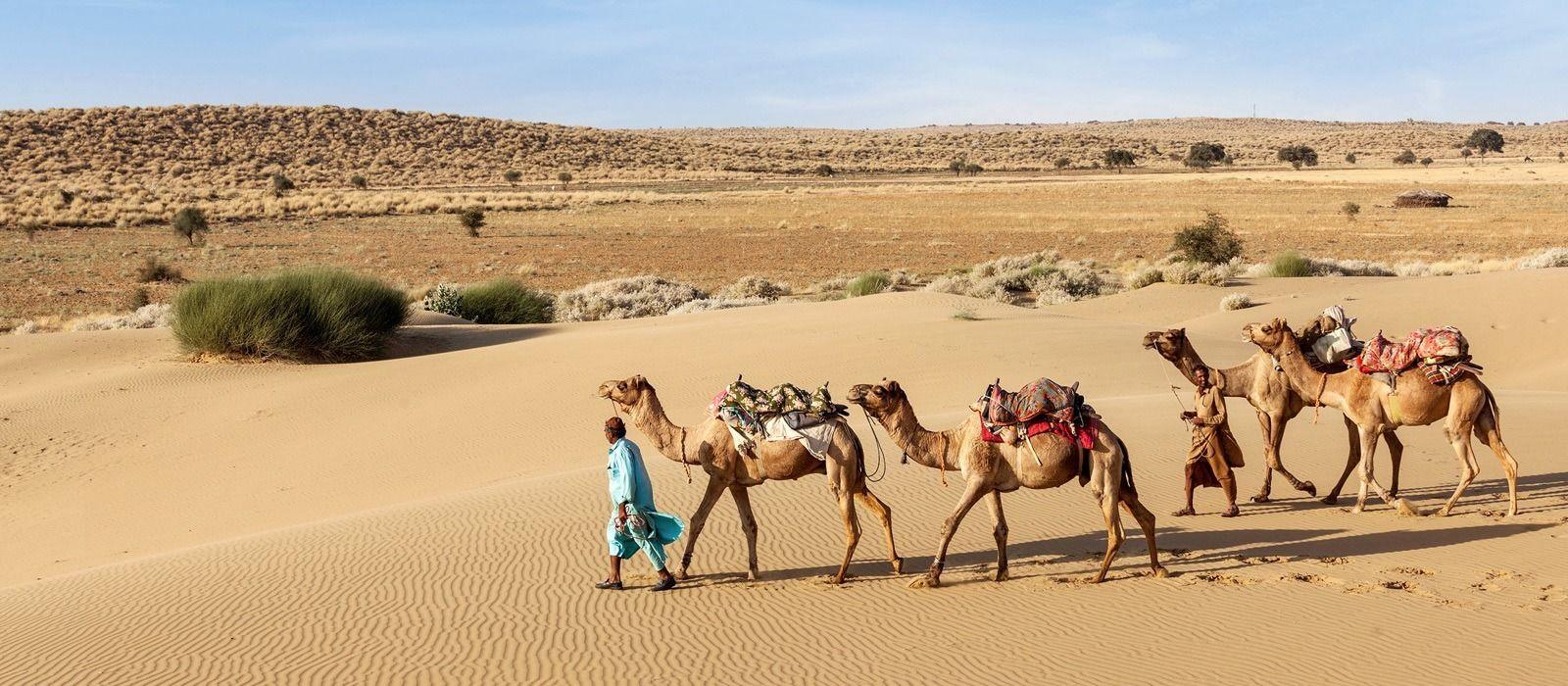 Rajasthan-Reise: Paläste und Tiger Urlaub 1