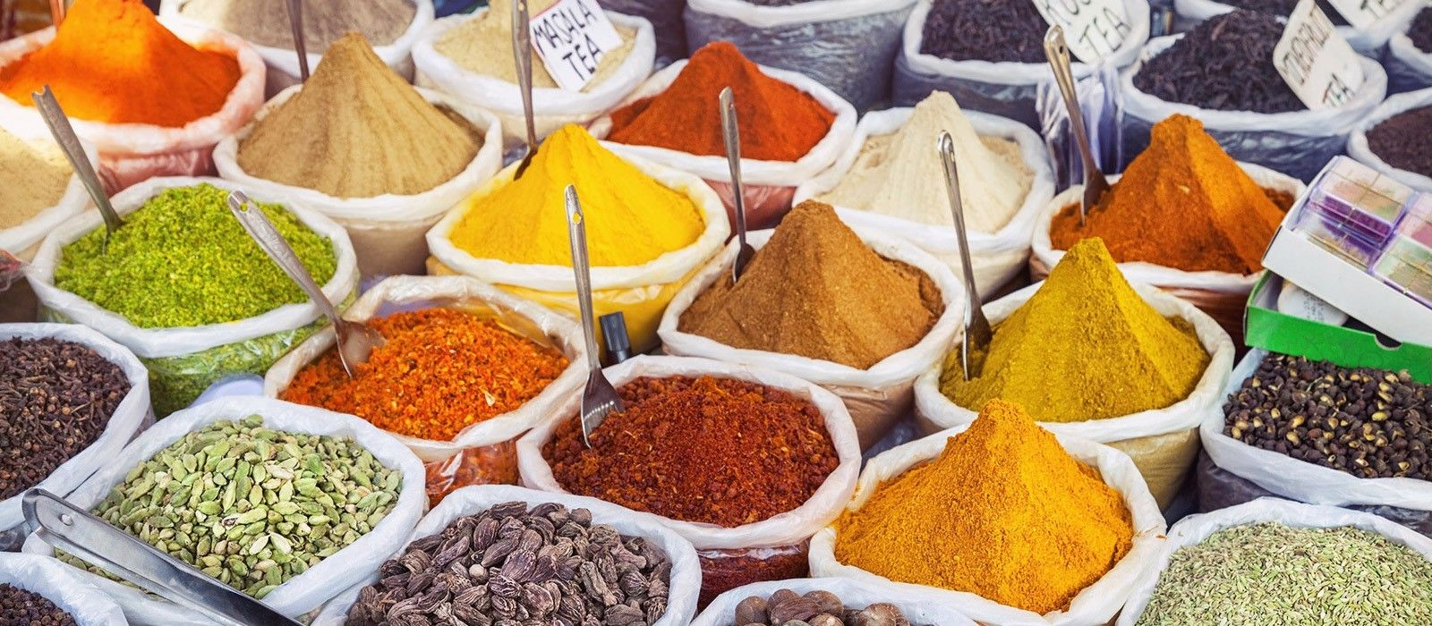 Southern Wildlife and Spices Tour Trip 2