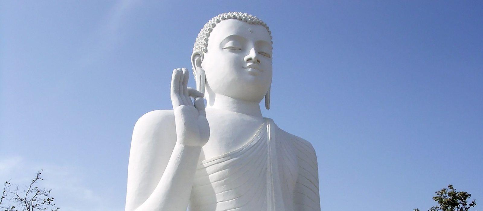 Simply Sri Lanka: Temples & Tea Tour Trip 7