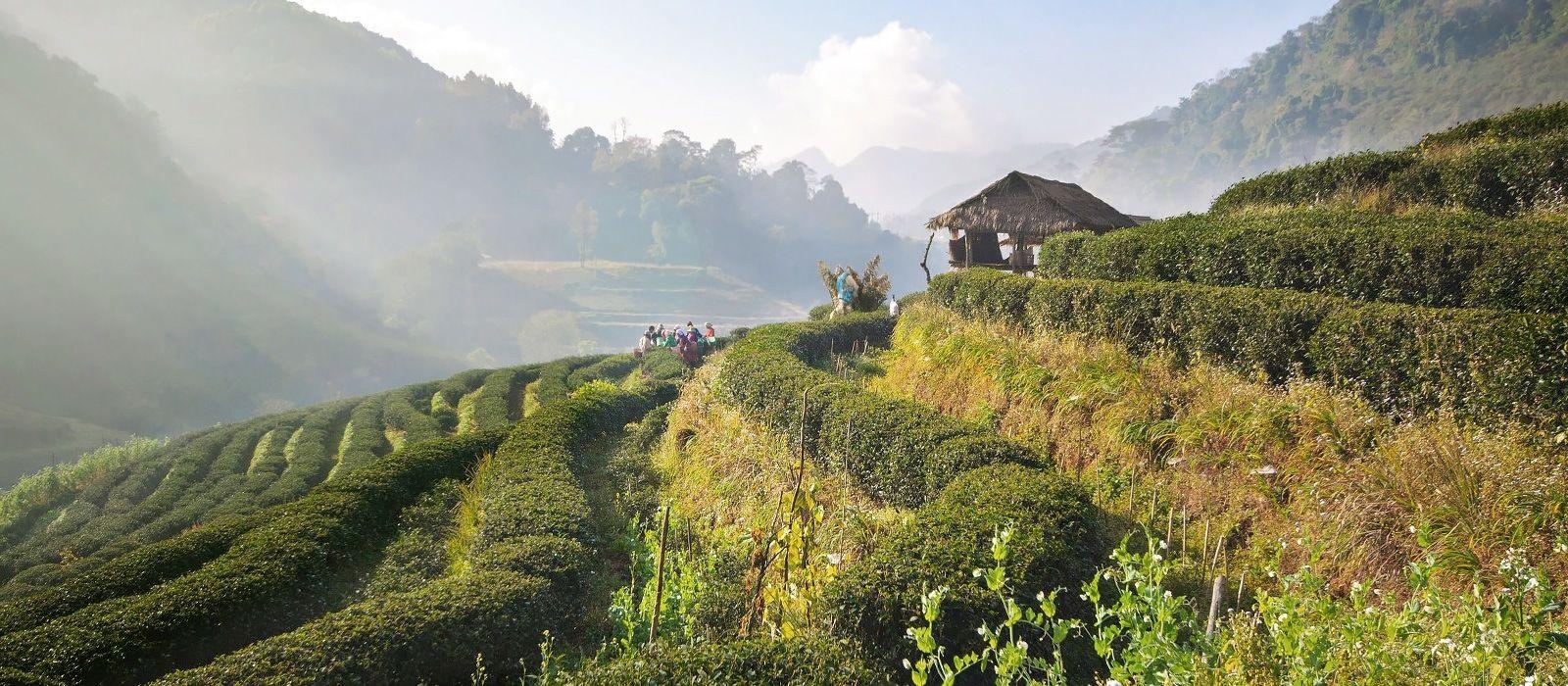 A Taste of Thailand & Myanmar Tour Trip 7