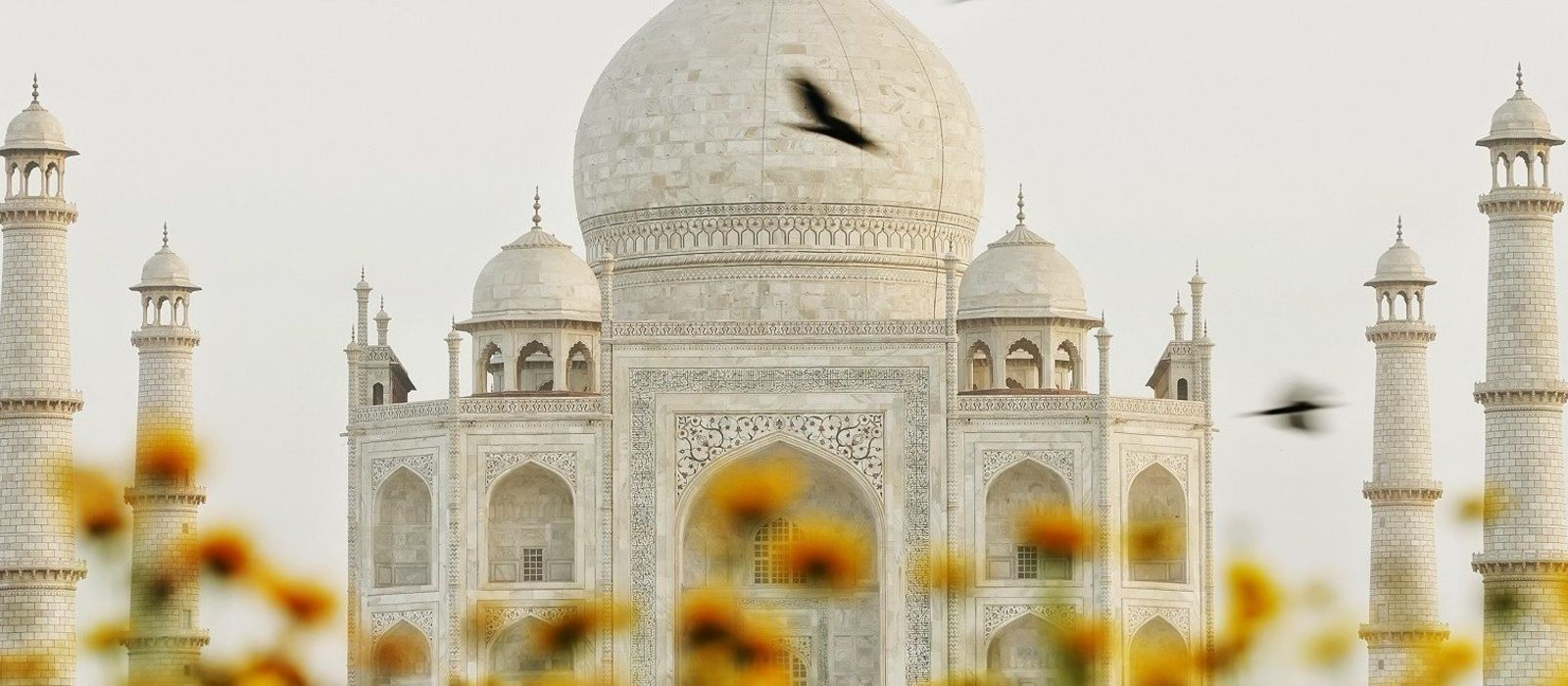 Rajasthan Rundreise: Geheimnisvolle Wüste, Paläste & Seen Urlaub 6