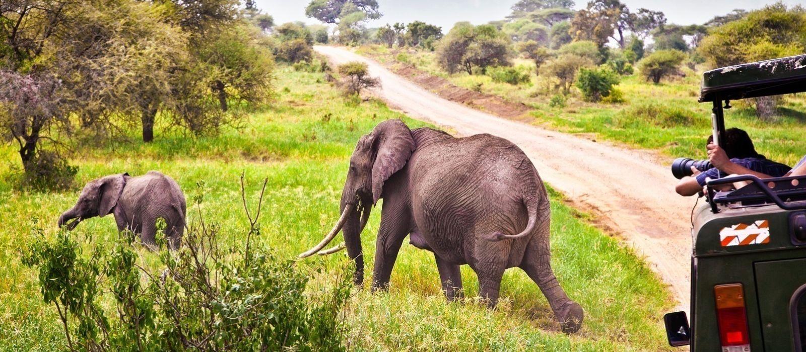 Stilvoll reisen in Tansania & Sansibar Urlaub 7