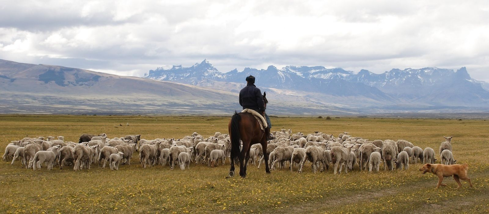 Chile: Awasi Iconic Extremes Tour Trip 6