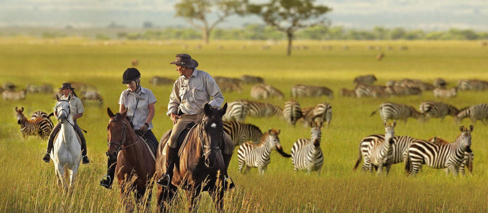 Stilvoll reisen in Tansania & Sansibar Urlaub 10