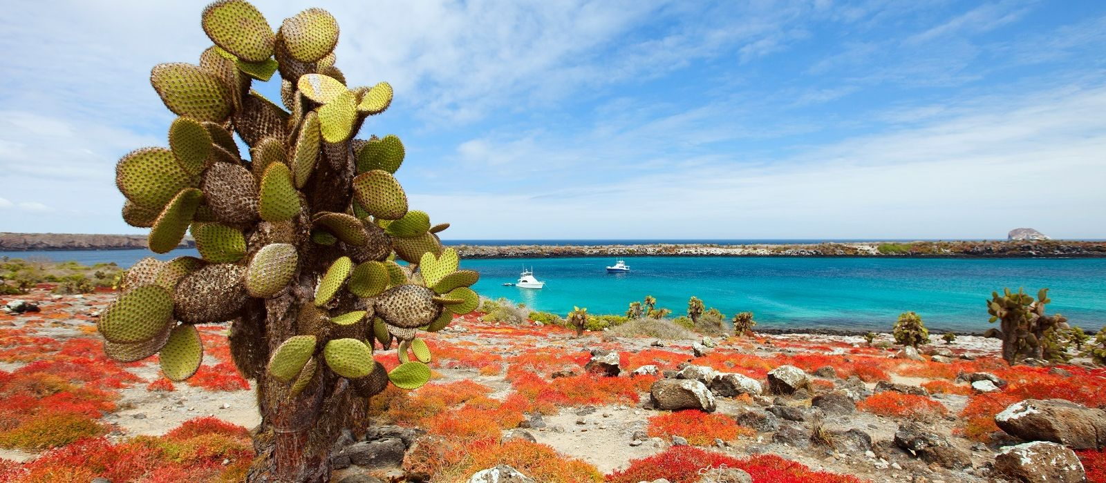 Ecuador – Die Geheimnisse von Galapagos Urlaub 3