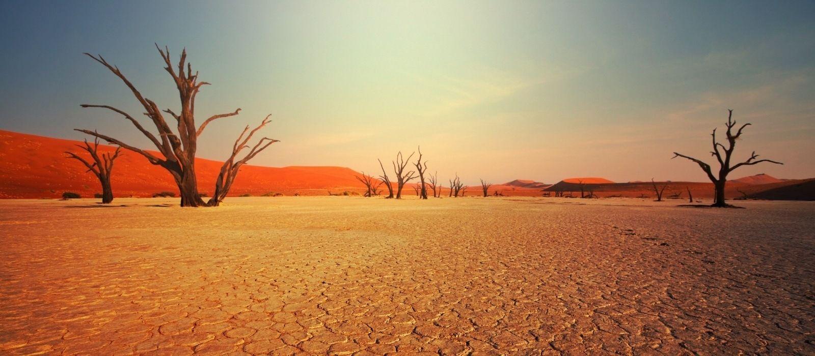 Namibia Rundreise: Höhepunkte des Nordens Urlaub 7