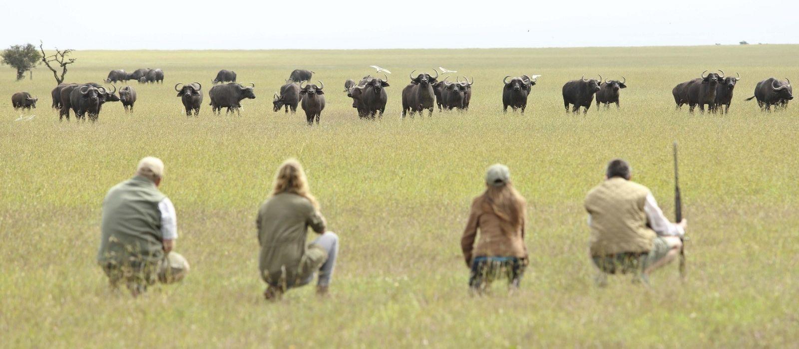Kenia: Wandersafari Rundreise Urlaub 1