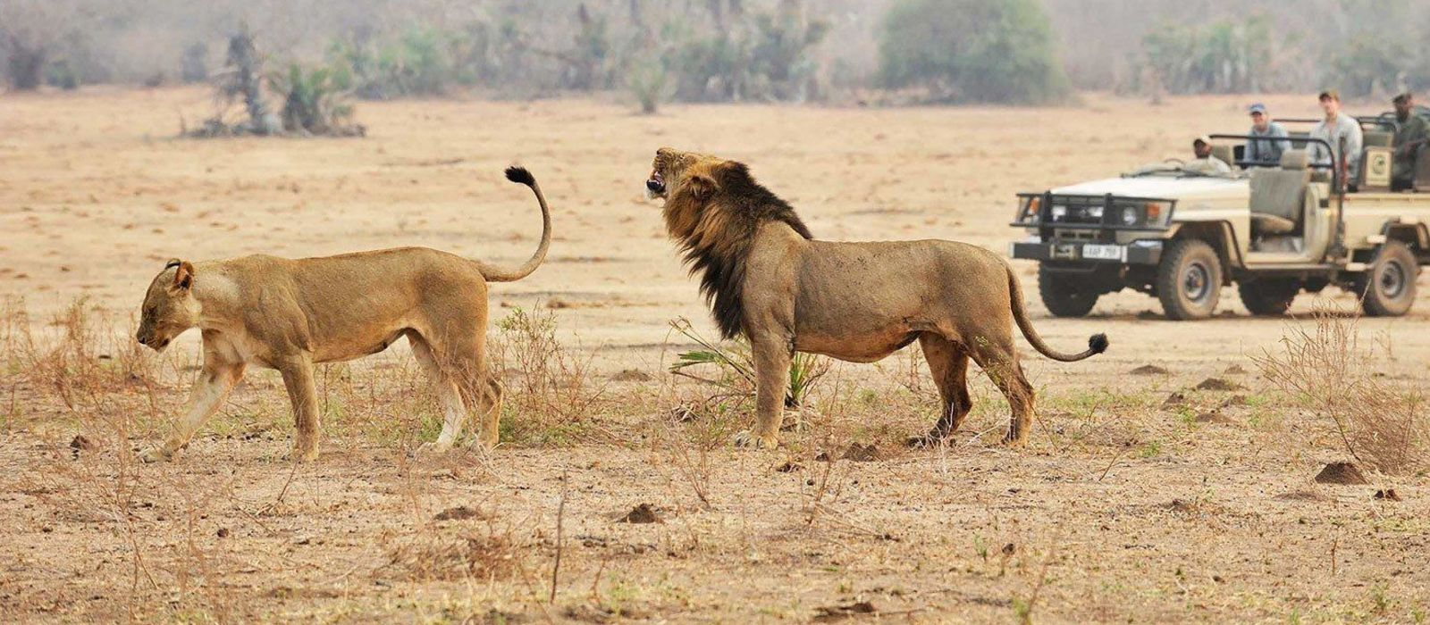 Tanzania – Southern Wilderness and Beach Tour Trip 3