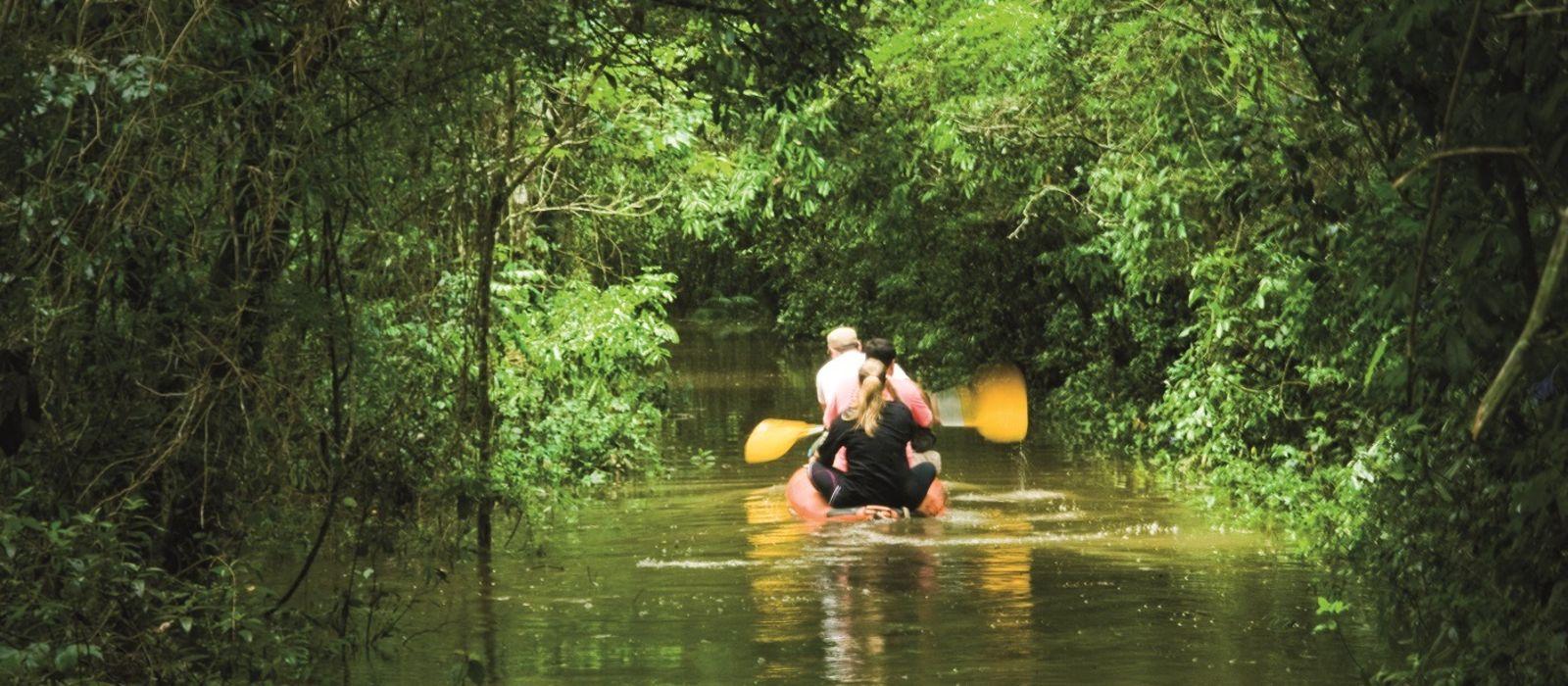 Brazil: Amazonas, Iguazu & Beach Bliss Tour Trip 3