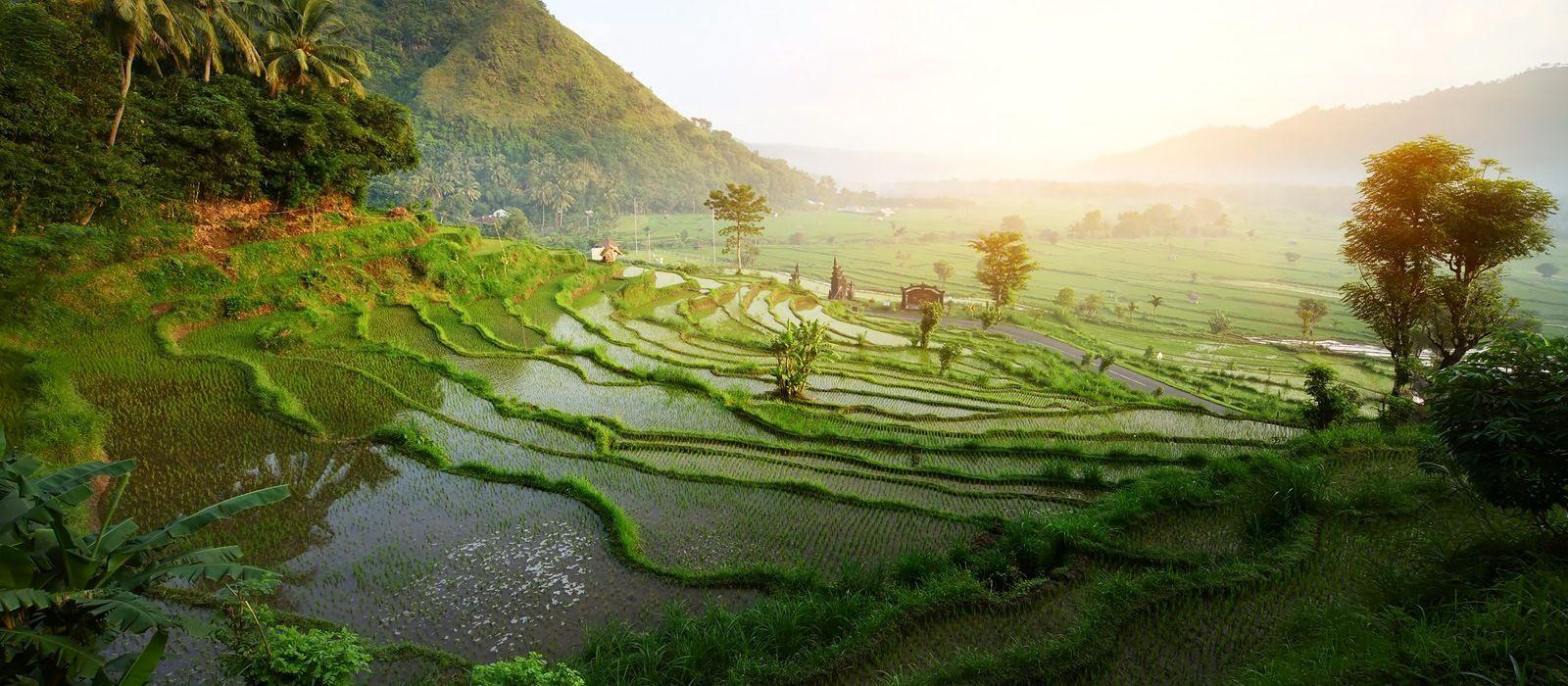 Festive Special: Indonesia's Timeless Landscapes and Unique Culture Tour Trip 2