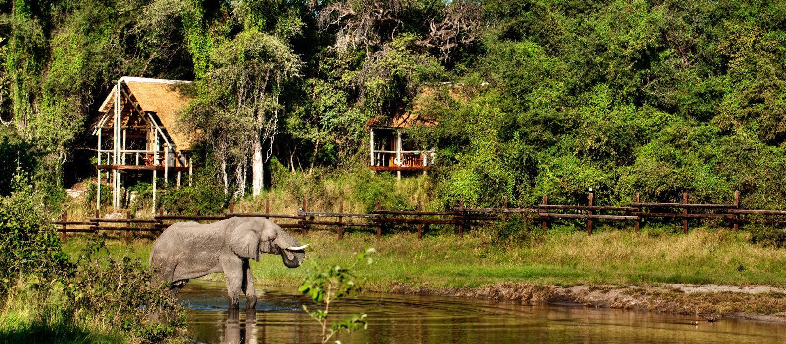 Hotel Savute Safari Lodge Botswana
