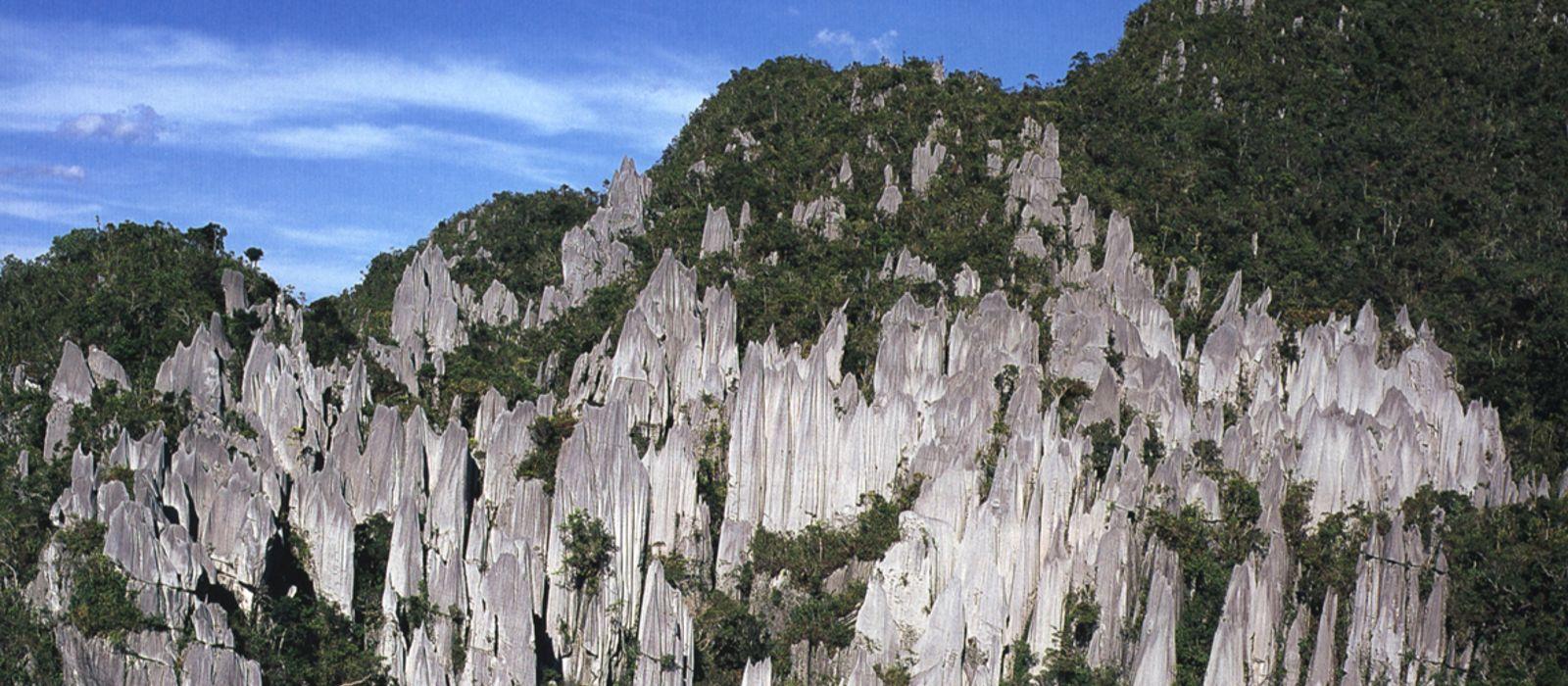 Destination Mulu Malaysia