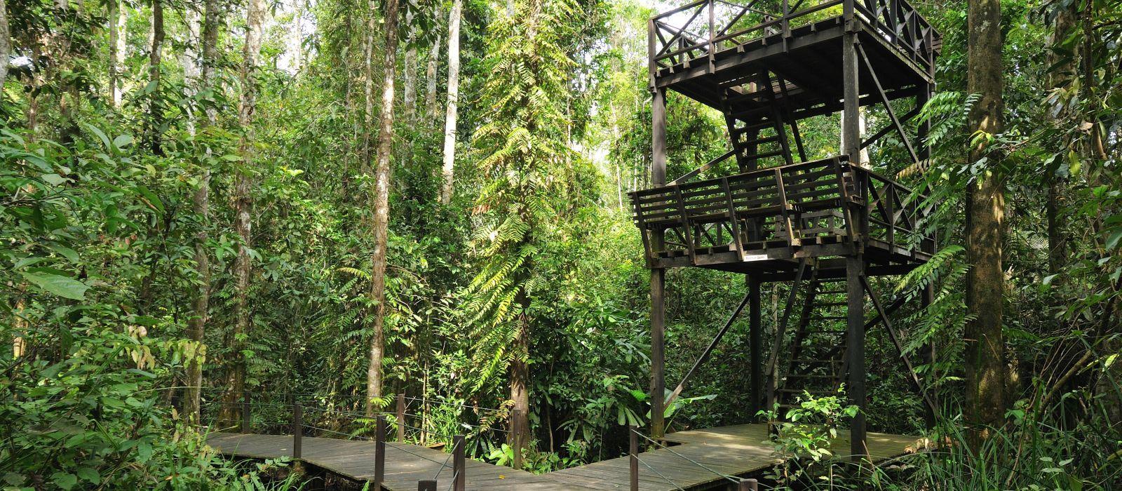 Nature, Wildlife & Adventure in Borneo Tour Trip 4