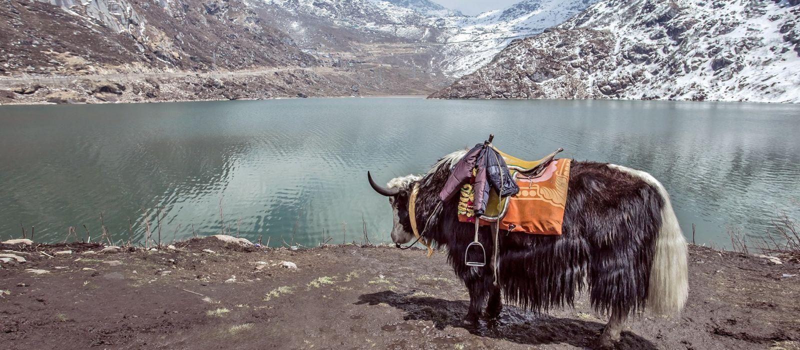 Höhepunkte von Sikkim und Bhutan Urlaub 4