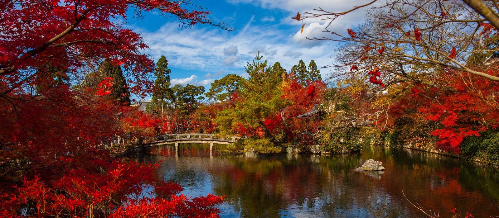Historic Japan and Koh Samui Beach Escape Tour Trip 3