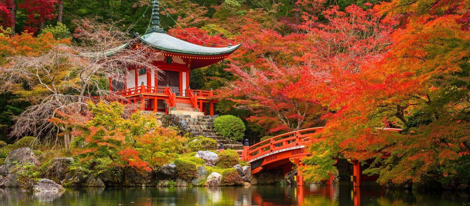 Just Japan: An Introduction Tour Trip 7