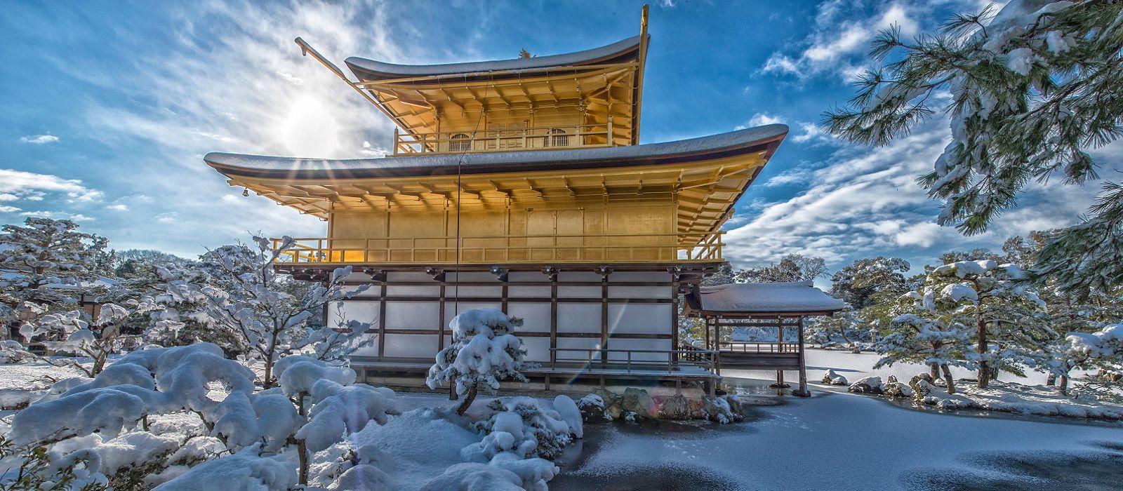 Just Japan: An Introduction Tour Trip 6