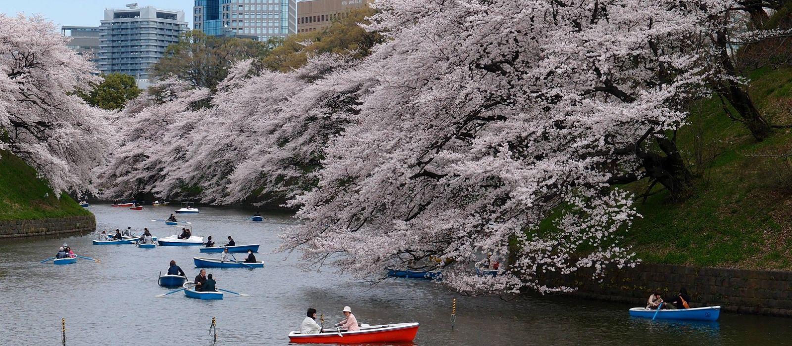 Just Japan: An Introduction Tour Trip 4