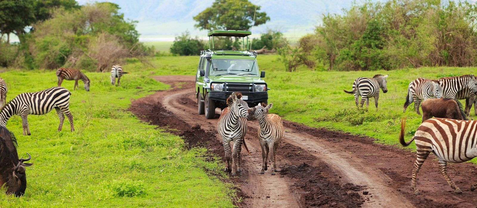 Highlights of Africa Tour Trip 2