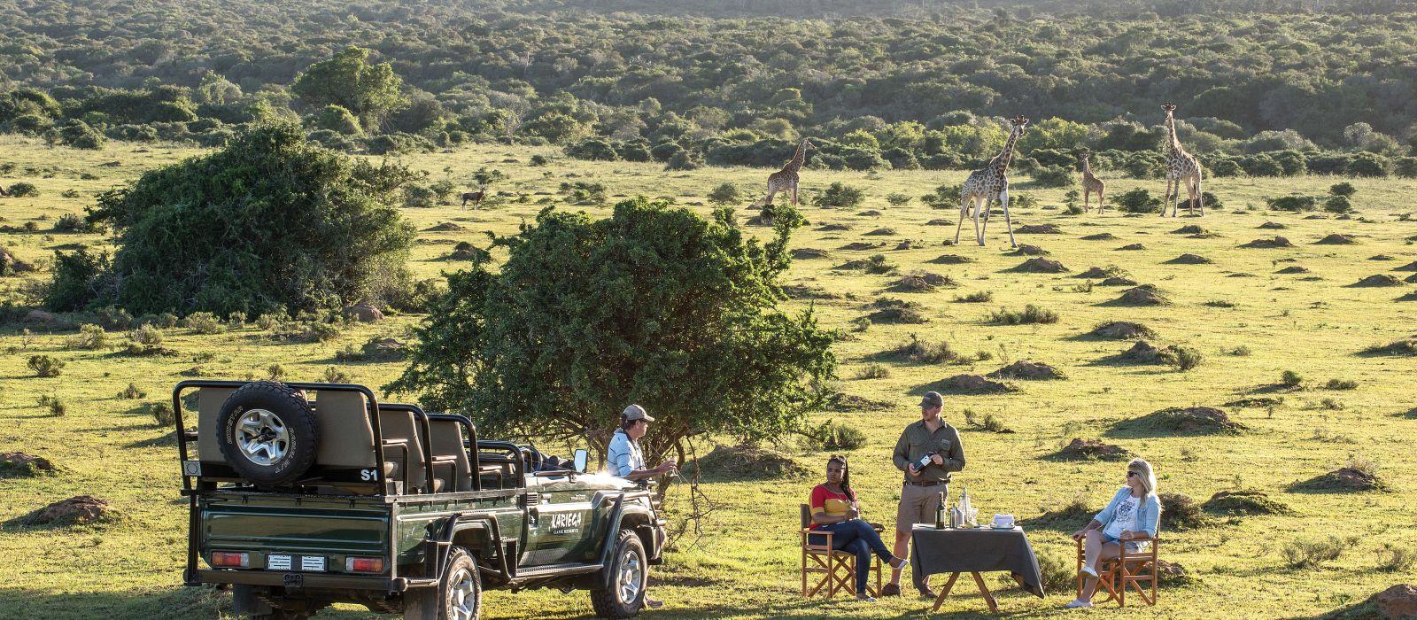 Südafrika & Mauritius: Wilde Tiere, weites Land & tropische Träume Urlaub 2
