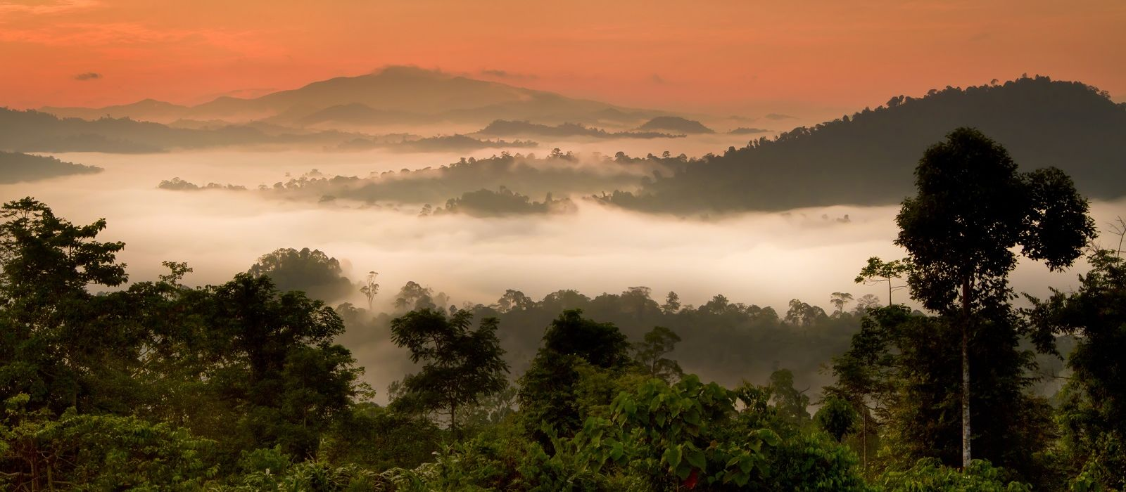 Wildnis und Strände Malaysias Urlaub 3