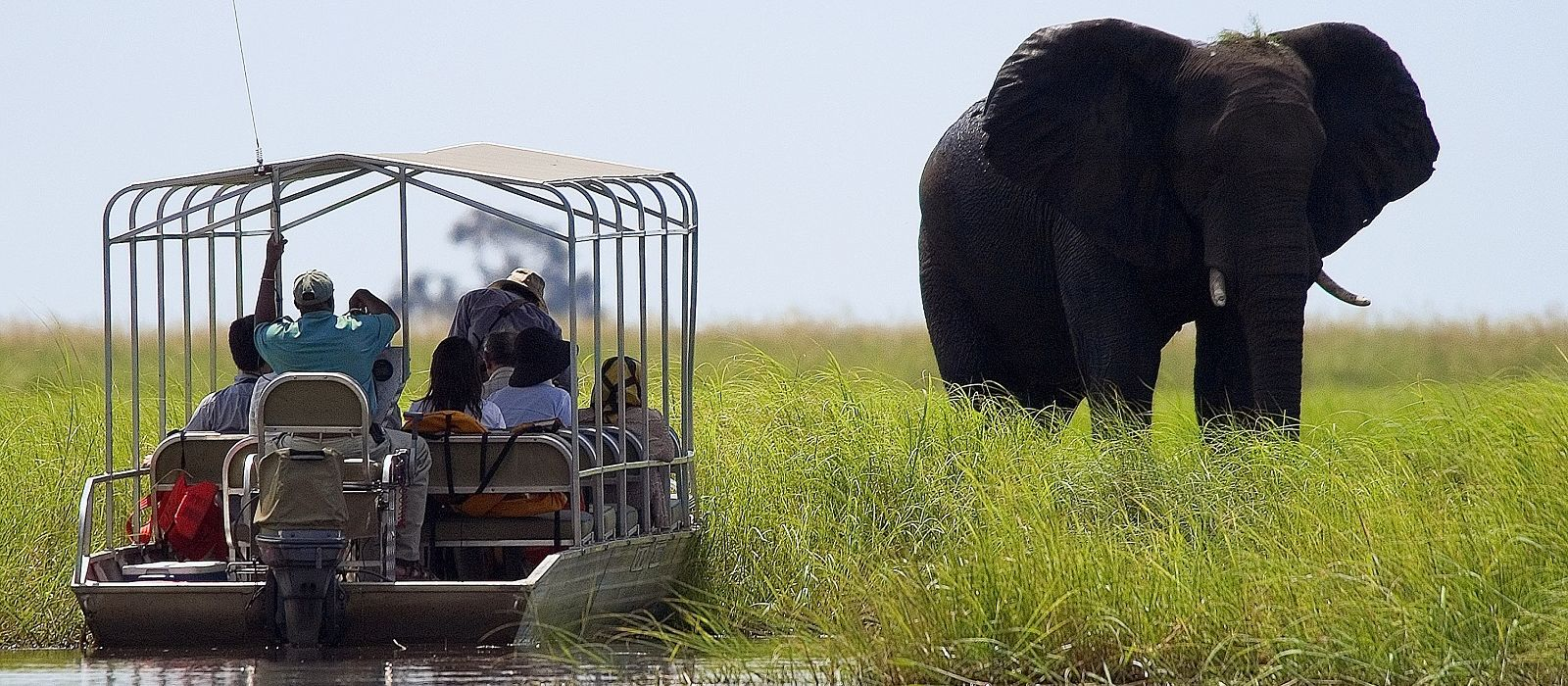 Southern Africa: Wildlife, Rovos Luxury and Cape Town Tour Trip 2
