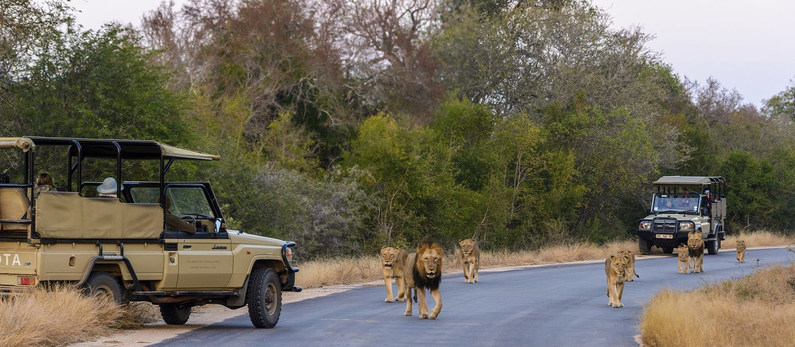 South Africa, Zimbabwe and Botswana: Wildlife and Waterfalls Tour Trip 3