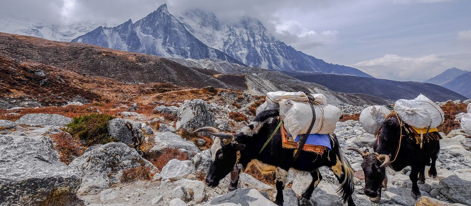 Tibet and Nepal: Himalayan Highlights Tour Trip 1