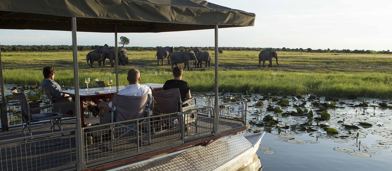 Southern Africa: Wildlife, Rovos Luxury and Cape Town Tour Trip 6