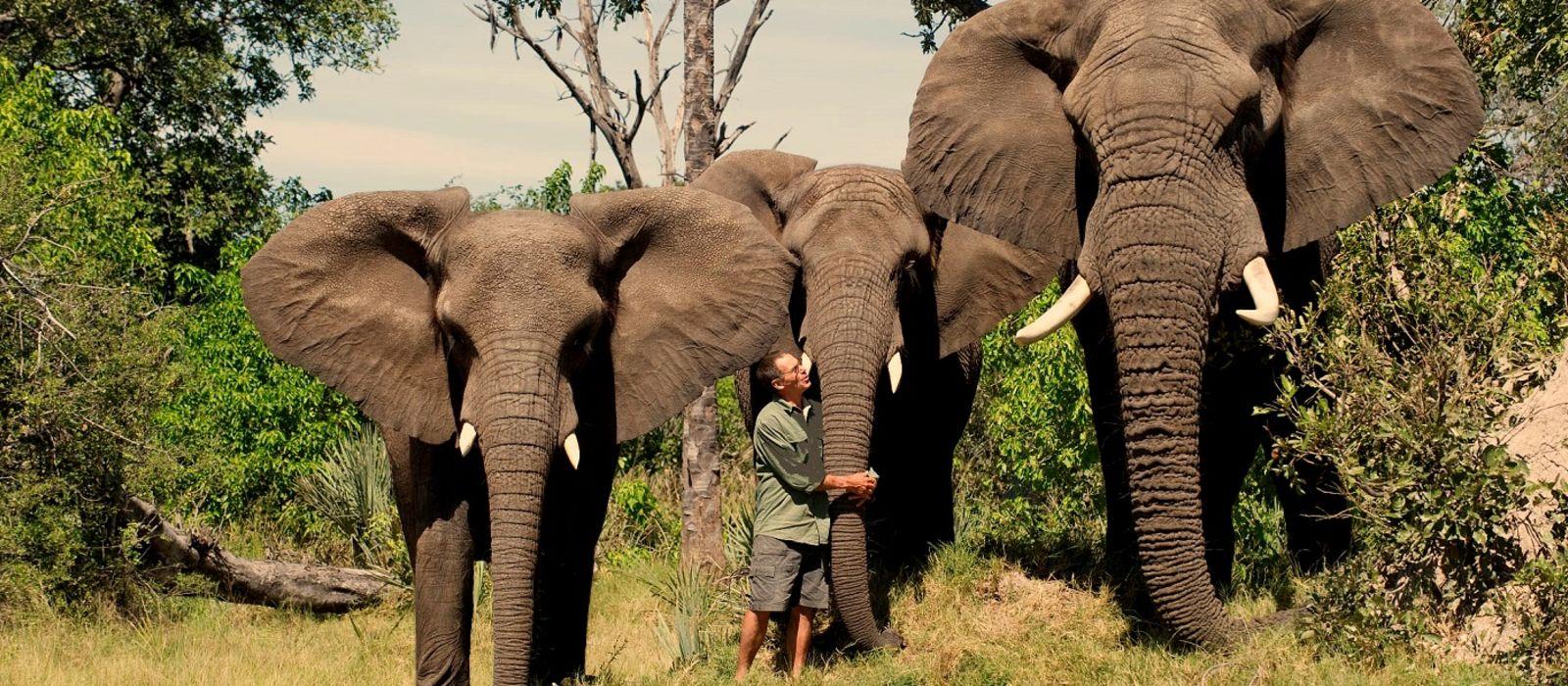 Klassische Safari Reise: Simbabwe & Botswana Urlaub 5