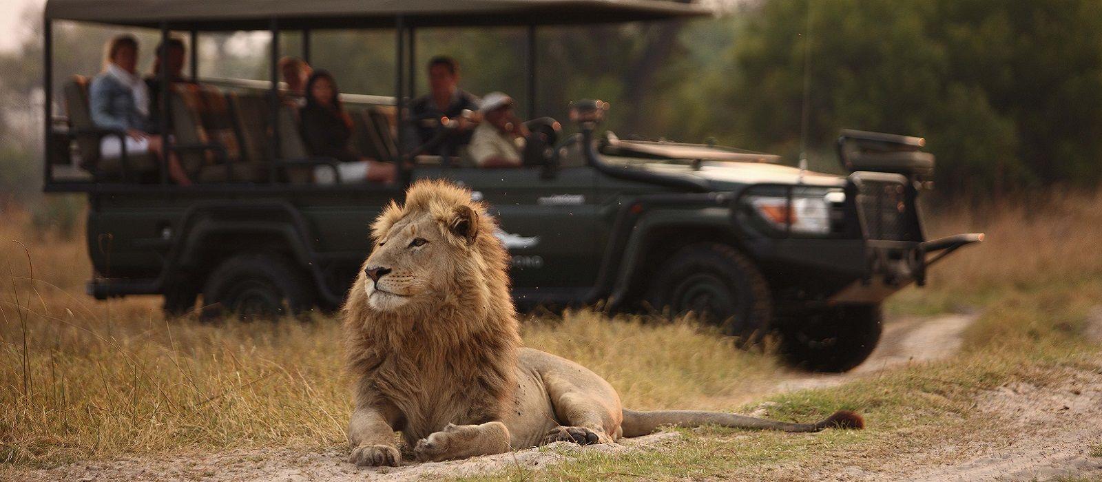 Von Sossusvlei zum Caprivi Streifen: Namibias Naturwunder Urlaub 3
