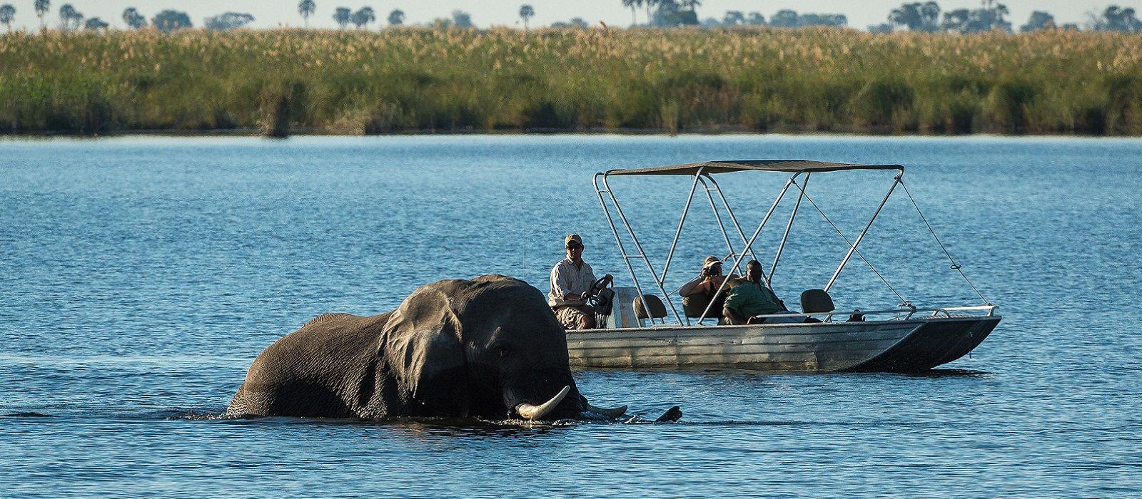 Safari Höhepunkte: Tansania, Simbabwe und Botswana Urlaub 7