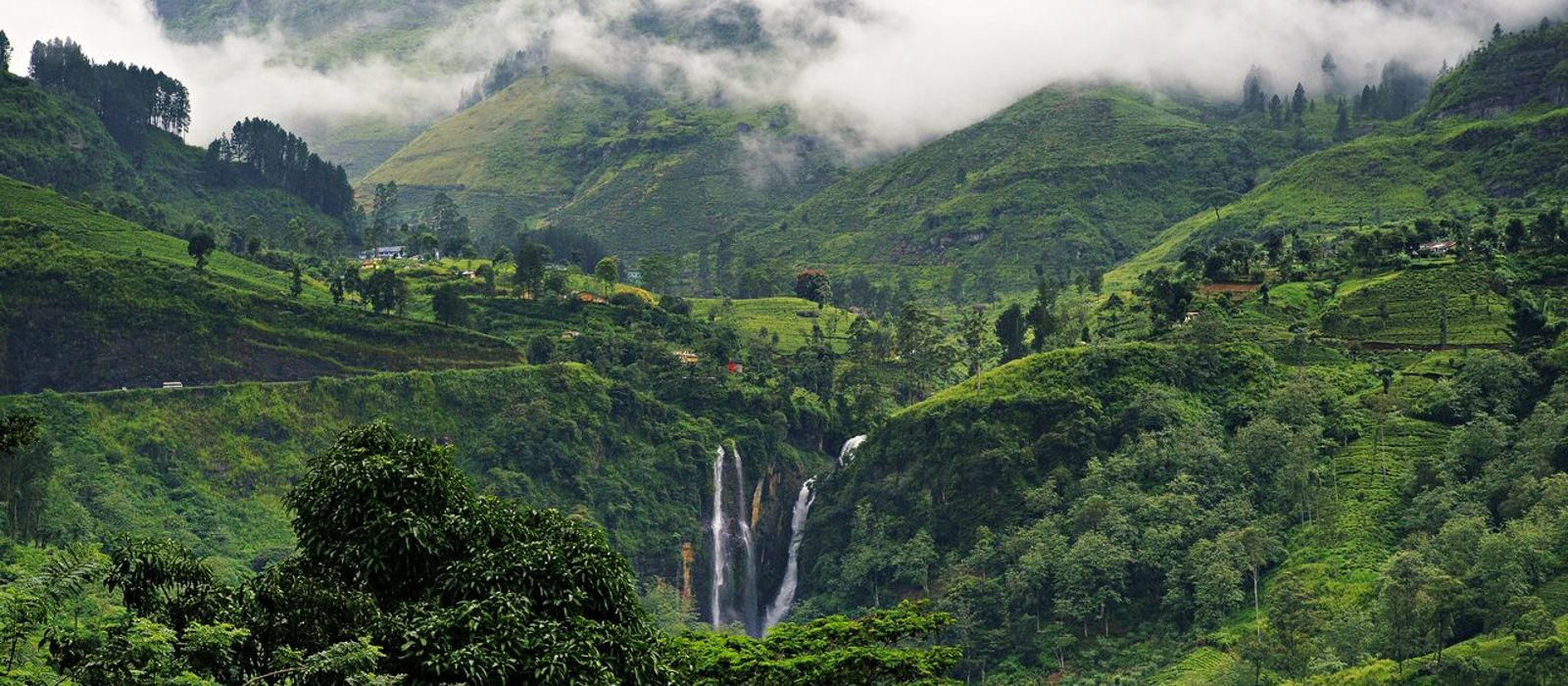 Die Höhepunkte Sri Lankas – Berge, heilige Felsen und Erholung am Strand Urlaub 4