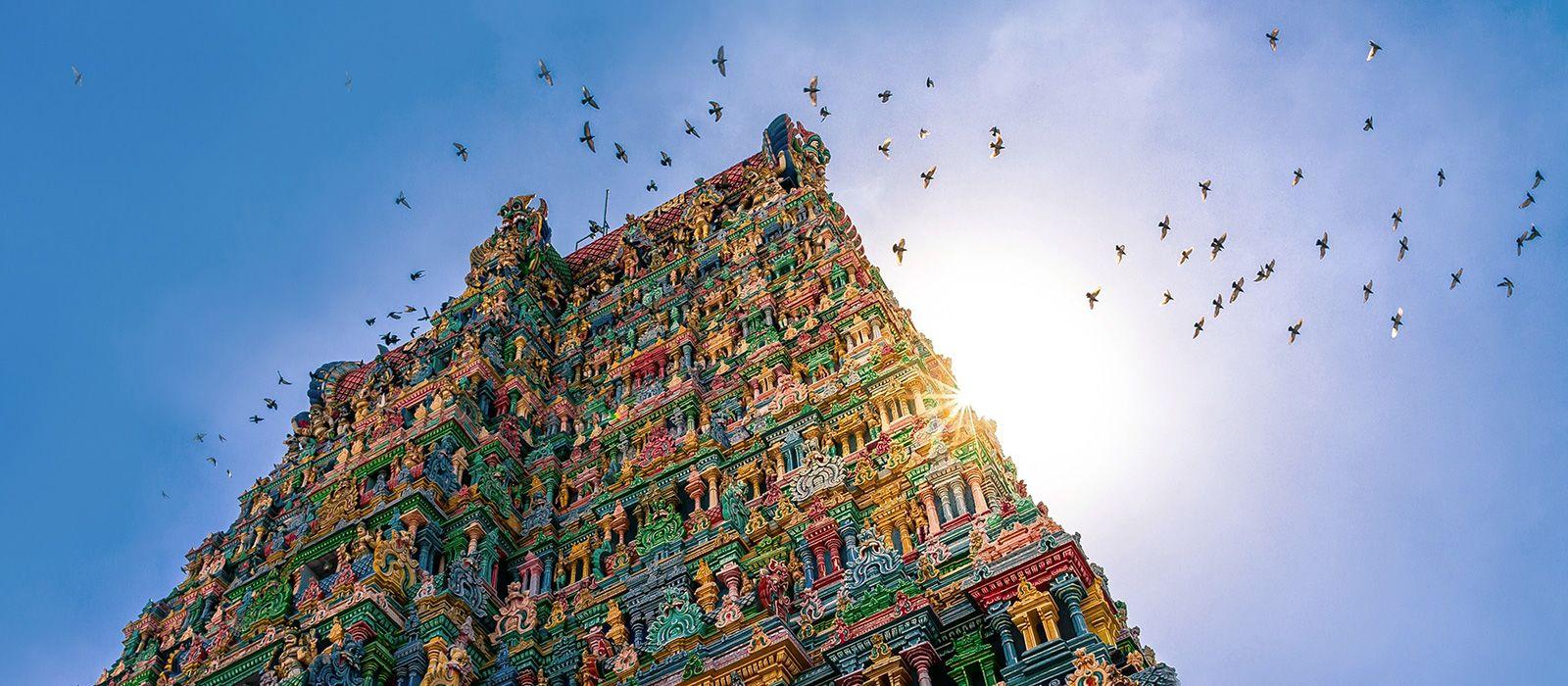 Spotlight on South India Tour Trip 4