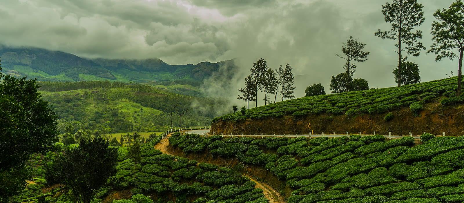 Classic Kerala: God's own Country Tour Trip 5